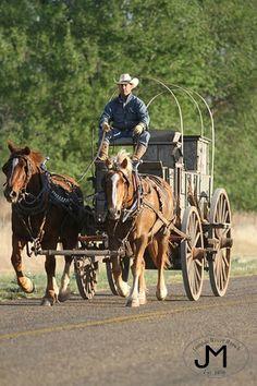 Chuck wagon - Fall Works - Horses - Tongue River Ranch