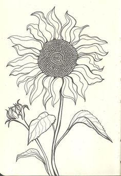Sunflower Coloring Pages Pdf from Printable Sunflower Coloring Pages. This funny sunflower shines all over your face. What she is missing now are bright colors. But you can certainly help her with that. Just print out th. Sunflower Coloring Pages, Sunflower Drawing, Sunflower Art, Line Drawing, Painting & Drawing, Drawing Ideas, Drawing Tips, Manga Drawing, Zantangle Art
