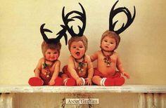 Anne Guedde Reindeer Magic