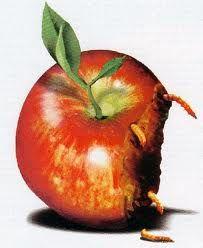 Solotablet.it - Apple market share: calo fisiologico o segnali di nuove tendenze?