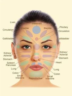 Facial reflexology chart