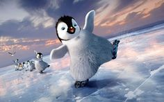 Cute Penguin Images Pics Download In High Resolution