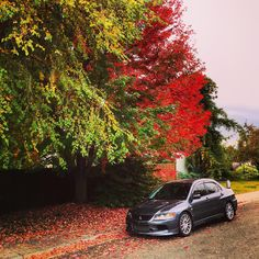 Autumn with my IX MR #Mitsubishi #lancer #Evo #Outlander #car #pajero