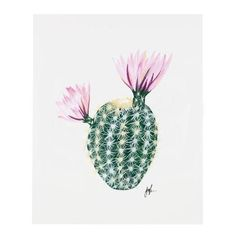 "Part II of a six part flowering cacti series. An art print of an original illustration by Patricia Shen. 8"" x 10"" Printed full color on heavyweight cover paper"