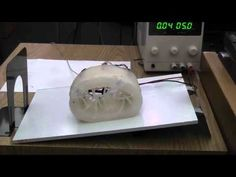 Soft Robot using Pneumatic Battery and EP Magnet Valves - YouTube