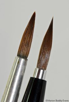 Watercolor tips brushes - Photo © Marion Boddy-Evans