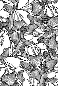CASCA. Black / White linework #floral #pattern