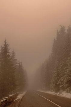 Under the fog, Sorin Markus