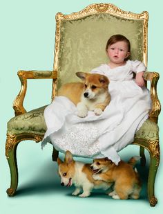 someone's idea of what the princes picture will look like, because of course there will be corgis there. Z