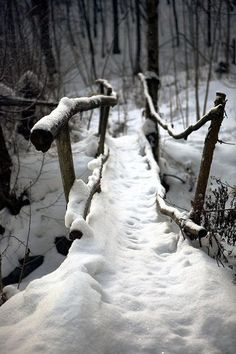 Snow covered foot bridge over stream in the woods.  Photo: December. ~Greige Design