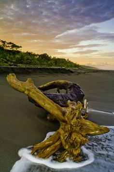 Lonesome Sunset - Costa Rica