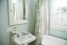 Bathroom paint color Opal Essence by Benjamin Moore
