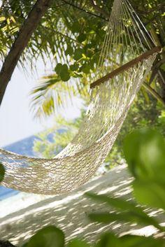 Photo about Tropical beach: hammock in a garden near the sea. Image of passtime, feel, relax - 4152447 Ocean Beach, Beach Day, Summer Sun, Summer Beach, Kings Hawaiian, Blue Friday, Relax, Corner Garden, Beautiful Sites