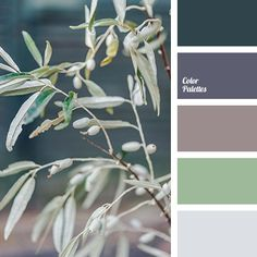 Grey #colorpalette #colorpalettes #kleuren #kleur #kleurentrends #colour #colours #colour #palette #design For more colour trends 2017 check http://www.wonenonline.nl/interieur-inrichten/kleuren-trends/