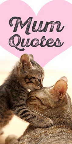 Send One of These Quotes to Your #Mum for Mother's Day!