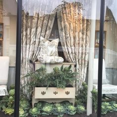 Woodbrown decorates Chelsea Textiles Window with cabbages and artichokes in a bed of soil