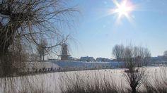 Update 4: Winterplaatjes uit de regio   RTV Rijnmond