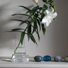 Holmegaard (ホルムガード)Flora(フローラ) ベース 24cm【楽天市場】