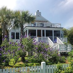 Vitex in full bloom at one of our #sullivansisland projects #beauclowneyarchitects #beachhouse #cottage #architecture #vitex #garden #screenedporch #charleston #design