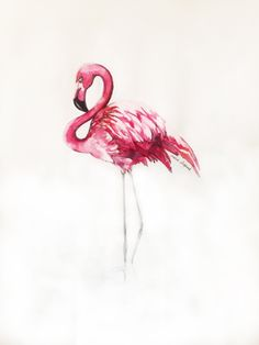For my gallery wall... Flamingo Art Print