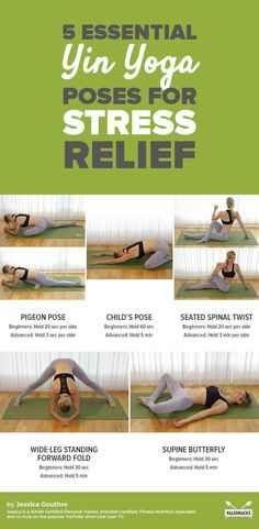 Easy Yoga Workout - Discover easy yin yoga postures that are excellent for relaxation, rejuvenation, and calming your mind and body. Get the full workout here: paleo.co/... Get your sexiest body ever without,crunches,cardio,or ever setting foot in a gym #YogaTechniqueAndPostures