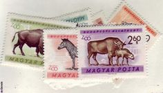 1961 Animals, Set of 10 - Issued for the Budapest Zoo. Tiger with cubs. Zebra and young. Bison cow with calf. Main entrance to Budapest Zoological Gardens. World Wild Life, Zoological Garden, Brown Bear, Postage Stamps, Hungary, Budapest, Polar Bear, Cubs, Kangaroo