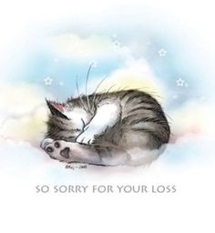 free sympathy cards for pets on facebook pet sympathy cards