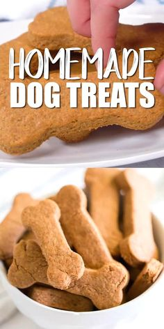 Dog Cookie Recipes, Easy Dog Treat Recipes, Dog Biscuit Recipes, Dog Food Recipes, Peanut Butter Dog Cookies Recipe, Homemade Dog Biscuits Recipe Easy, Doggie Cookies Recipe, Easy Dog Biscuit Recipe, Cookies For Dogs