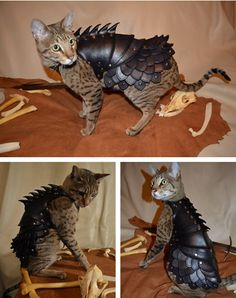 Ways to be killed by your cat: Cat Battle Armor by SavagePunkStudio