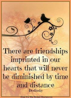 Quotes Friendship Distance Memories My Best Friend 39 Best Ideas Great Quotes, Quotes To Live By, Me Quotes, Inspirational Quotes, Jesus Quotes, Motivational, Funny Quotes, Besties Quotes, Sister Quotes