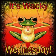 A frog thinks it's Wacky Wednesday, not Hump Day! Wednesday Greetings, Wednesday Hump Day, Happy Wednesday Quotes, Good Morning Wednesday, Wednesday Humor, Wacky Wednesday, Wonderful Wednesday, Monday Quotes, Blessed Wednesday