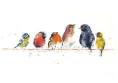 Small birds on a wire (Valentine tweets) painted by artist Jane Davies. Available as an LIMITED EDITION PRINT.