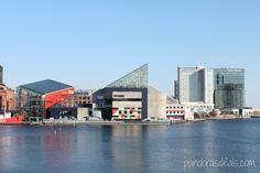 National #Aquarium in #Baltimore