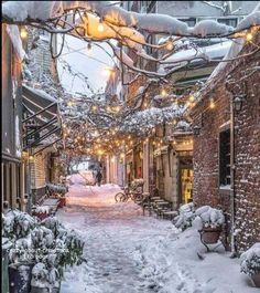 ideas for nature winter wonderland snow scenes Winter Szenen, Winter Magic, Winter Time, Winter Season, Winter Walk, Winter Months, Winter Wonderland, Snow Scenes, Winter Beauty