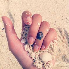 tatuagem de conchas