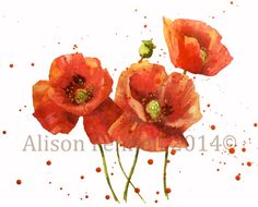 Here is a simple watercolour step-by-step to paint some pretty poppies - just right for a warm spring day. The paper is hot pressed but you can use NOT or ROUGH - you will just get a different look...