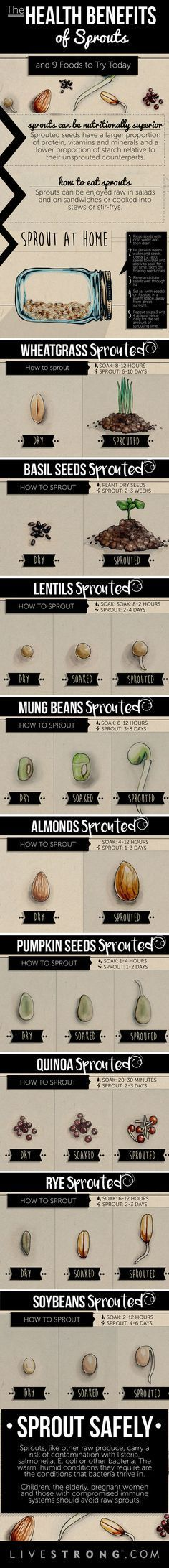 Health Benefits of Sprouts and 9 Foods to Try Today The At-Home DIY Guide to Sprouting!The At-Home DIY Guide to Sprouting! Health And Nutrition, Health Tips, Diy Guide, Raw Food Recipes, Healthy Recipes, Vegetable Recipes, Get Healthy, Food Hacks, Good To Know