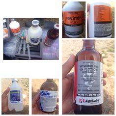 Medicamentos & vitaminas usados en rumiantes