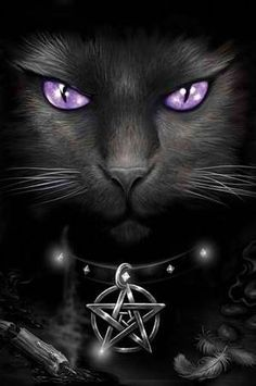 Wicca cat. Looks just like mine.