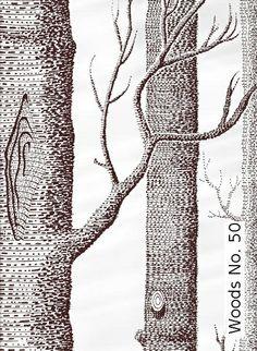 Tapete: Woods No. 50 - TapetenAgentur