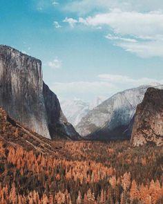 Yosemite National Park                                                                                                                                                                                 More