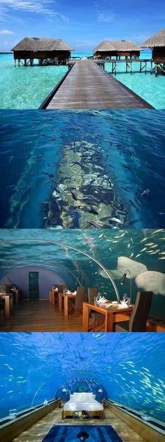 Conrad Maldives Rangali Island(10+ Pics) nice ~underwater restauraunt ~underwater bedroom ~glass floor