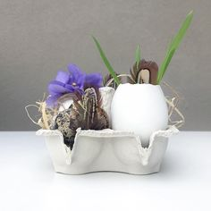 Moje letošní výzdoba. #easterdecoration #vyzdoba #velikonoce Planter Pots, Easter, Easter Activities