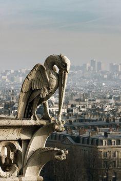 Du haut de Notre Dame  Paris