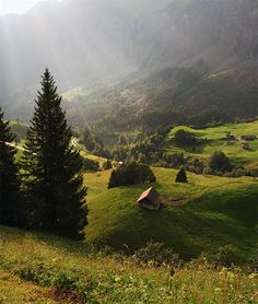 the hills are alive with the sound of music?