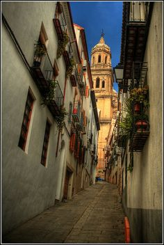 Catedral de Jaen, Spain