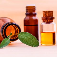 There are three essential oils that can help thicken the hair: Rosemary is one of the best oils for enhancing hair growth, which thickens the hair. Rosemary oil is believed to increase cellular metabolism that stimulates hair growth. Cedarwood essential oil can help stimulate the hair follicles by increasing circulation to the scalp. This can contribute to hair growth and slow hair loss! Cedarwood can help treat thinning hair and various types of alopecia, too. Clary sage essential oil can…