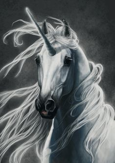 Unicorn by NutLu.deviantart.com on @deviantART