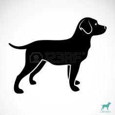 vector afbeelding van een hond labrador op een witte achtergrond stockfoto puppy sittingdog silhouettestock