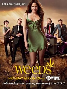 """The cast of """"Weeds"""" is phenomenal as is the writing by Jenji Kohan. Love Hunter Parrish, Justin Kirk, Elizabeth Perkins, Kevin Nealon, and of course Mary-Louise Parker and (the deliciously handsome) Romany Malco!"""